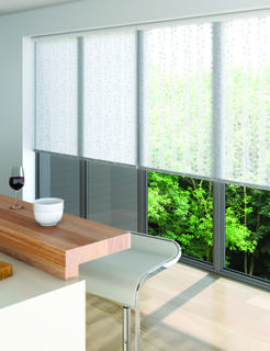 Sunscreen roller blind - Vines - White
